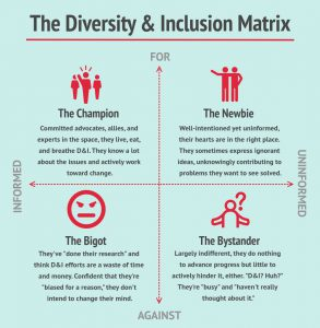 Chart identifying the diversity and inclusion matrix